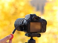 Pico dongle offers automatic time lapse control