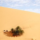 Sand and sky: Photographing Morocco