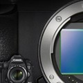 Heavy Hitters: 2014 High-end Full-Frame Camera Roundup