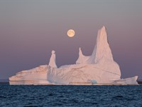 Erez Marom: On the importance of naming images