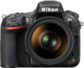 With greater clarity: Nikon D810 Shooting Experience