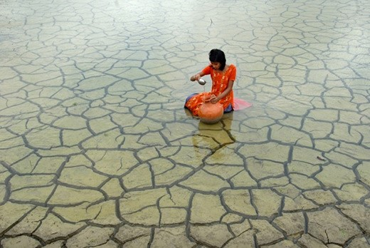 Atkins Ciwem Environmental Photographer of the Year 2014 shortlist revealed