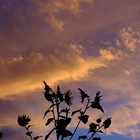 Un-Common Sky & Cloud Colors. . .