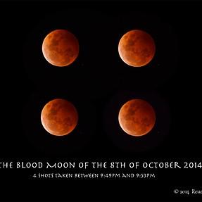 Blood Moon of October 8 2014 taken w/ E-5 & 50-200mm swd w 1.4x tc