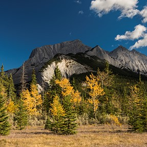 Canadian Rockies' Fall Colours