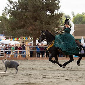 Jousting pictures: San Diego, Ca