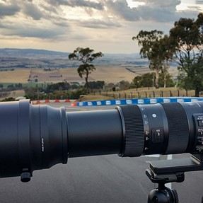 Sigma 150-600mm F5-6.3 DG OS HSM Sport - Hands on with Australian Wildlife