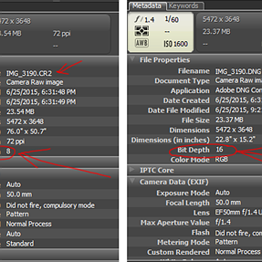 Canon 6D Raw, how to get all 16 bits into my DNG