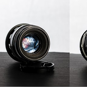 A comparison of affordable vintage 50mm lenses adapted to a Canon DSLR