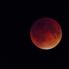 Some of my SX50 Lunar Eclipse Shots