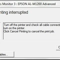 ESPON M1200 error printing