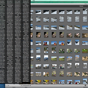 """Question on IPHOTO """"Keywords"""" access"""