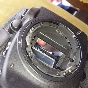 Killed my new Nikon D810 a few days ago :(