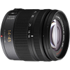 Panasonic Lumix G Vario 14-45mm F3.5-5.6 ASPH OIS Review