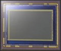 Sony 12.5 MP APS-C CMOS sensor, 10 fps
