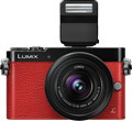 Panasonic unveils Lumix DMC-GM5 with EVF
