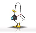 What The Duck #1455