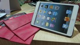 Golla extends trendy line to iPad mini