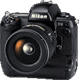 Nikon D1H